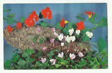 Flowers 1960's postcard