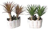 2 x Palmen Gesteck im Topf 24 cm SPAR-SET Kunstpflanze künstlich getopft (1914)