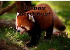 Red Panda Cute Printed Personalised Birthday Card Animal !