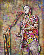 Isaac Brock of Modest Mouse 16x20in Poster, Modest Mouse Art Free Shipping Us