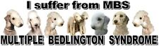 """""""I Suffer from  MULTIPLE  BEDLINGTON  SYNDROME"""" Dog Car Sticker by Starprint"""