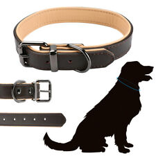 "1"" Width Padded Dog Collar Heavy Duty Genuine Real Leather Medium Large Pet"
