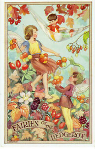 SHERBORNE ARTIST SIGNED OLD POSTCARD FAIRIES IN HEDGEROW BRAMBLES & HIPS SALMON