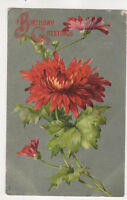 Birthday Greetings Tuck Floral Studies 1906 Greetings Postcard  US063