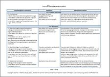 Über 2000 Formulierungshilfen für eine Pflegeplanung + 3 Pflegeplanungen!!!
