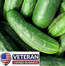cucumber seeds marketer 35+ Heirloom Vegetable seeds