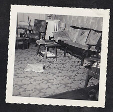 Antique Vintage Photograph Cat Laying in Bag on Floor in Retro Living Room