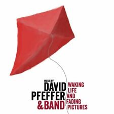 David Pfeffer | Cd | Waking life and fading pictures (& Band)