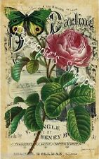 Fabric Block Vintage Pink Rose Butterfly Sheet Music Chic Shabby