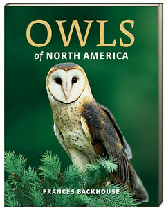 Owls of North America by Frances Backhouse (Paperback)