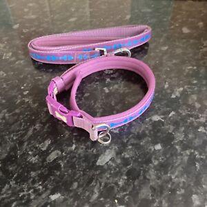 dog collar and lead