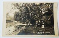 Along Pleasant Brook - Smyrna, NY -RPPC Postcard - vtg real photo postcard