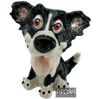 Little Paws Border Collie Dog Jewellery Trinket Box  NEW