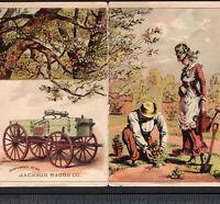 Jackson Wagon 1800's Collision Poem old Farm Victorian Flower Garden Trade Card