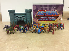 Matty Mattel He Man MOTU Minis Complete Collection Collector Owned! Pics!