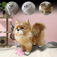 Realistic Simulation Pomeranian Dog Toy Plush Toy Doll Stuffed Animal Kid Gift