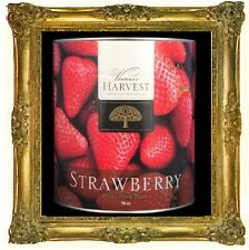 WINE KIT STRAWBERRY CANNED FRUIT WINE BASE 96oz #10 CAN VINTNERS HARVEST 3-5 GAL