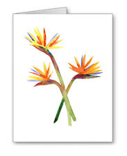 Bird Of Paradise Note Cards With Envelopes