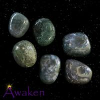 *ONE* MOSS AGATE Natural Tumbled Stone Approx 15-20mm *TRUSTED SELLER*