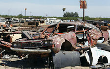 1972-74 Dodge Challenger rusting away in salvage yard 11 x 17 Photograph