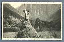 France, Fond de France, Jeunes femmes juchées sur une botte de foin  Vintage sil