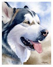 """Alaskan Malamute"" Watercolor Dog Art Print Signed by Artist Djr"