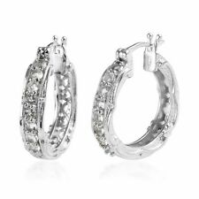 Platinum Plated Petalite Stylish Hoops Hoop Earrings Fashion Jewelry for Women