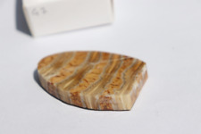 47) Woolly Mammoth Tooth Polished Slice Fossil - Ideal For Jewelry Making