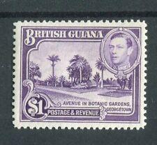 British Guiana KGVI 1938-52 $1 bright violet SG317 MNH