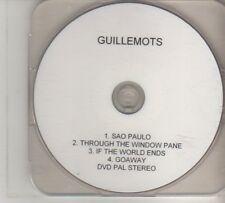 (DO850) Guillemots, Sao Paulo - DJ DVD