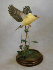 American Goldfinch Original Wood Carving
