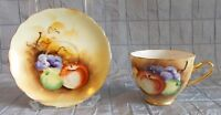 VINTAGE ENESCO TEA CUP & SAUCER HAND PAINTED FRUIT PATTERN (153)