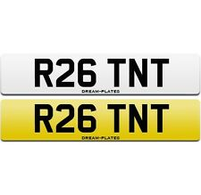 R26 TNT personali PRIVATE NUMBER PLATE r26.r f1 TEAM RENAULT SPORT Coppa Megane