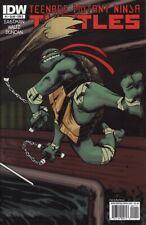 TEENAGE MUTANT NINJA TURTLES #1 COVER D IDW Comics Michelangelo TMNT 1ST PRINT!