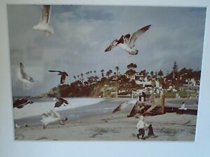 Vtg Original Photo Lang Photography Signed Plus Bonus California Laguna Beach