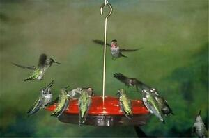 ASPECTS #143 HummZinger EXCEL, 16 oz HUMMINGBIRD FEEDER, Made in the USA     #dm