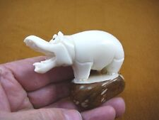 (Tne-Hip-274-A) Hippo Hippopotamus Tagua Nut Fig