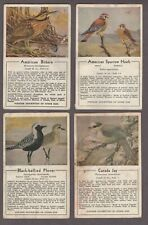 Very Scarce 1932 Hallidays Colored Bird Pictures Trading Cards Lot of 17/20