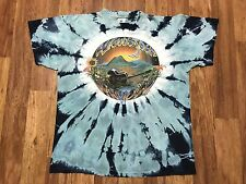 Vtg 1989 Woodstock Nation Guitars Tie Dye Hippie Festival Rock 80s T-Shirt L USA