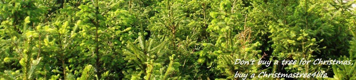 christmastrees4life