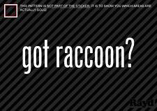 (2) Got Raccoon Sticker Decal mammal