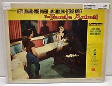 "Original Vintage Lobby Card ""The Female Animal "" 1958"