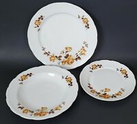 Mitterteich Bavaria Brown Rose Luncheon Plate Coupe Soup Bowl Salad Plate Set/3