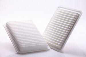 Air Filter FEDERATED FILTERS PA5625F