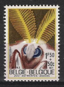 BELGIUM:1971 SC#B379 MNH Insects Luna moth, p366