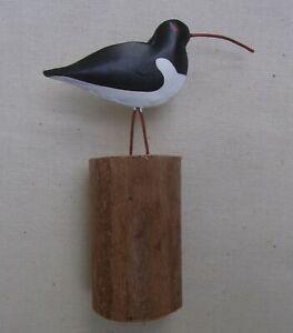 Little Oyster Catchers  Wader Bird  Decoration   Shore Birds  2 sizes  coastal