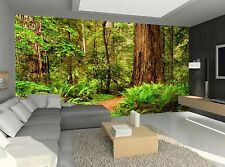 Redwood Forest Photo Wallpaper Wall Mural DECOR Paper Poster Wall art Free Paste