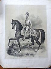 Retrato emperador Franz Joseph I de Austria caballo transforme mostrarían raras para 1850