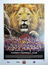 AFL Brisbane Lions Fitzroy 1996 Team Poster