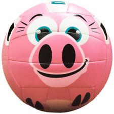 Molten MS500 pig Pig Volleyball -